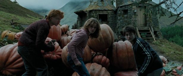 Harry-Potter-And-The-Prisoner-Of-Azkaban-ronald-weasley-17166152-1920-800